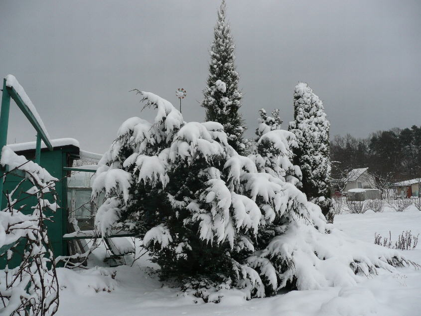 Zima nanaszym Osiedlu